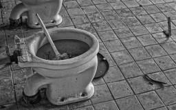 Prora WC-Bürste